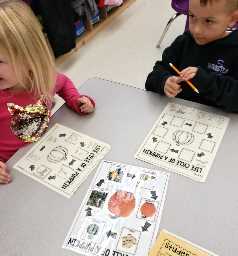 Preschool learning about the life cycle of a pumpkin.